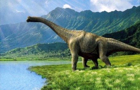 Dinosauri-foligno_civitanova marche_jacopo_marocco
